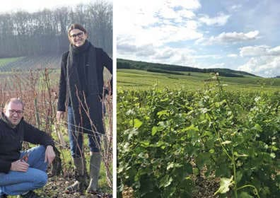 Quality Takes Domaine Serge Laloue Sancerre to a Different Level